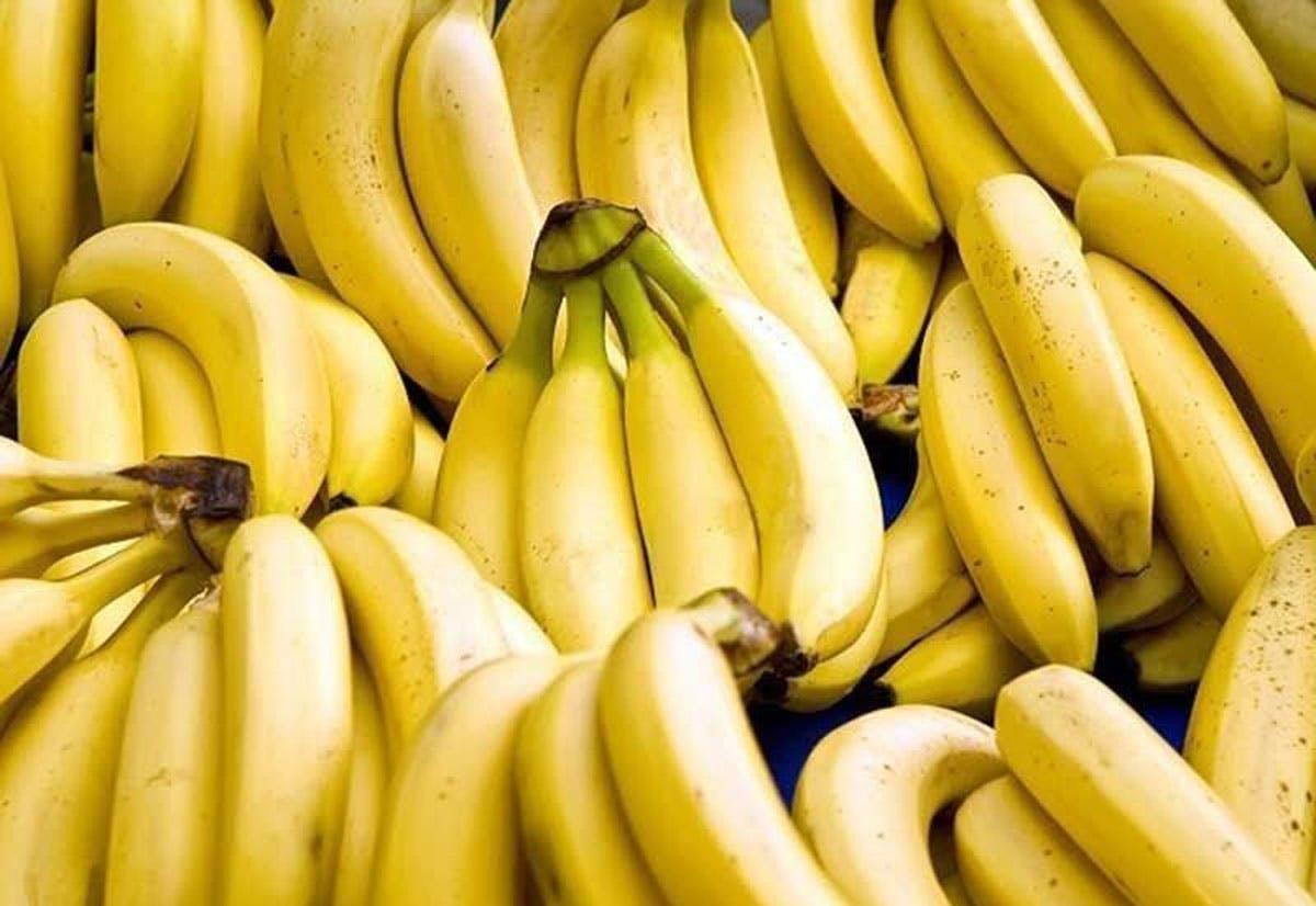 Bananas Boost Phl's Exports Despite COVID-19 Pandemic